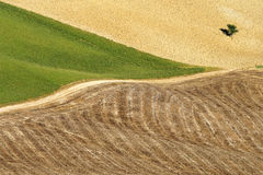 Areal view on Toscanian landscape Stock Photos