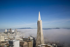Areal view on Transamerica pyramid and city of San Francisco covered by dense fog. SAN FRANCISCO,CA - MARCH 29: Areal view on Transamerica pyramid and city of royalty free stock photography