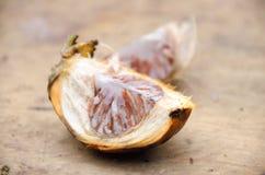 Areca καρύδι ή betel - φοίνικας καρυδιών πέρα από το τέμνον υπόβαθρο πινάκων selec Στοκ Εικόνα