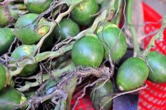 Areca τα φρούτα είναι για την πώληση σε μια τοπική αγορά στο Βιετνάμ Στοκ φωτογραφία με δικαίωμα ελεύθερης χρήσης