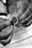 areca betel καρύδι φύλλων Στοκ εικόνα με δικαίωμα ελεύθερης χρήσης