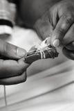 areca betel καρύδι φύλλων Στοκ φωτογραφίες με δικαίωμα ελεύθερης χρήσης