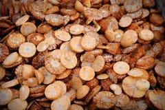 areca betel ξηρό καρύδι Στοκ φωτογραφία με δικαίωμα ελεύθερης χρήσης