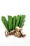 Areca betel leaves nut Stock Photos