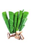 Areca betel leaves nut Stock Photography