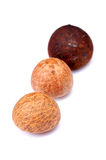Areca nut. The areca nut is not a true nut but rather a drupe. It is commercially available in dried, cured and fresh forms. While fresh, the husk is green and stock photo