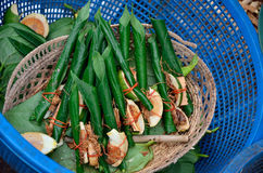 Areca nut, betel nut chewed with the leaf is mild stimulant. For sell in local market, Thailand Royalty Free Stock Photos