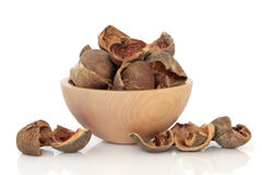 Areca Nut Peel Royalty Free Stock Image