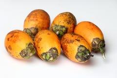 Areca nuts. & x28;Areca catechu& x29; on a white background stock image