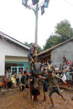 Areca tree-climbing race to commemorate Indonesia's independence day Royalty Free Stock Photos