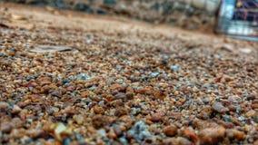 areia, fotos de stock royalty free