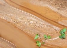 Areia Imagens de Stock Royalty Free