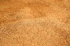 A areia Imagem de Stock