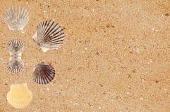 A areia amarela com mar descasca o fundo Fotos de Stock
