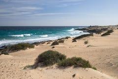 Areia amarela e pedras pretas no litoral vulcânico fotos de stock