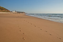 Areia Branca海滩 免版税图库摄影