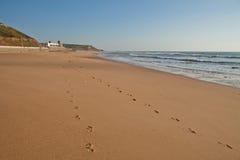 Areia Branca beach. Praia da Areia Branca beach in Portugal royalty free stock photography