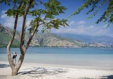 Areia branca tropikalny plażowy widok blisko Dili w wschodnim Timor Fotografia Stock