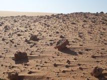 Areia com sal em um deserto Fotos de Stock Royalty Free