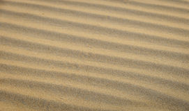 Areia da onda da sombra e da luz Imagem de Stock
