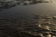 Areia da ondinha do mar Fotografia de Stock Royalty Free