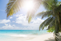 Areia da praia e oceano corais brancos dos azuis celestes. Ilhas de Seychelles. Fotos de Stock