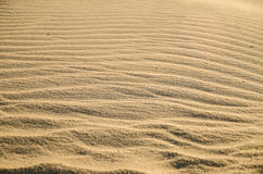 Areia da textura Imagens de Stock Royalty Free
