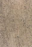 Areia do fundo da textura de Brown Fotos de Stock Royalty Free