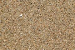 Areia do mar Imagem de Stock