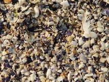 Areia do mar Fotografia de Stock Royalty Free
