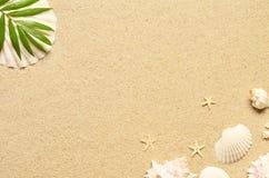 Areia do mar com estrela do mar e shell Vista superior com espaço da cópia imagem de stock