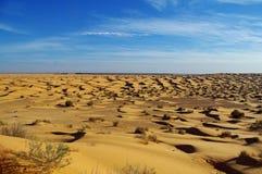 A areia do Sahara Foto de Stock