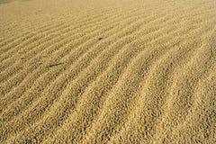 Areia e deserto fotografia de stock