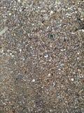 Areia e escudo fotografia de stock