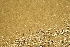 Areia e escudos fotografia de stock royalty free