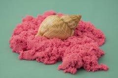 Areia e escudos cor-de-rosa sobre o fundo verde de turquesa Conceito do feriado Areia cinética imagens de stock