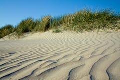 Areia e grama na praia Fotografia de Stock Royalty Free