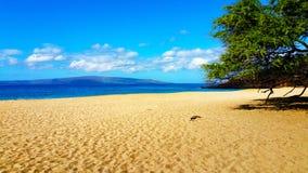 Areia e praia do oceano da rocha fotos de stock