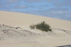 A areia está tocando no céu Fuerteventura Foto de Stock Royalty Free