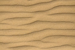 Areia/fim textura do solo acima Imagem de Stock Royalty Free