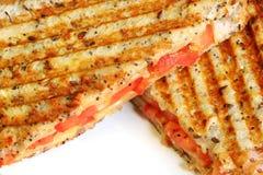 Areia grelhada do queijo e do tomate Fotografia de Stock