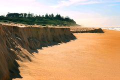 A areia lavou afastado na praia shelly na costa central do Gales do Sul da notícia que sae de bordas pequenas da areia fotos de stock royalty free
