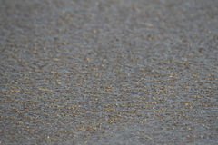 Areia molhada Foto de Stock Royalty Free