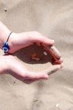 Areia na mão da mulher Imagem de Stock Royalty Free
