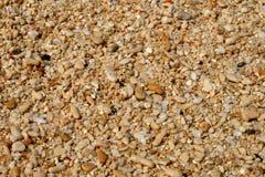 Areia na praia Imagem de Stock Royalty Free