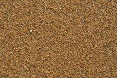 Areia na praia closeup Fotos de Stock