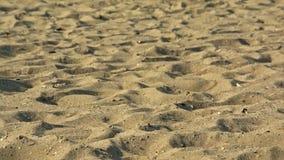 Areia na praia, foco seletivo fotografia de stock