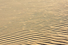 Areia nas dunas Imagem de Stock
