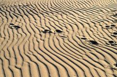 A areia no litoral assinou pelo vento Imagens de Stock