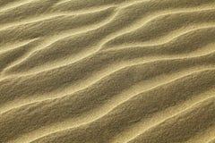 Areia Rippled Imagem de Stock Royalty Free